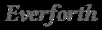 株式会社Everforth