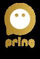 株式会社pring